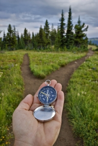 Compass in hand, fork in trail